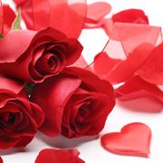 valentines-day-newquay